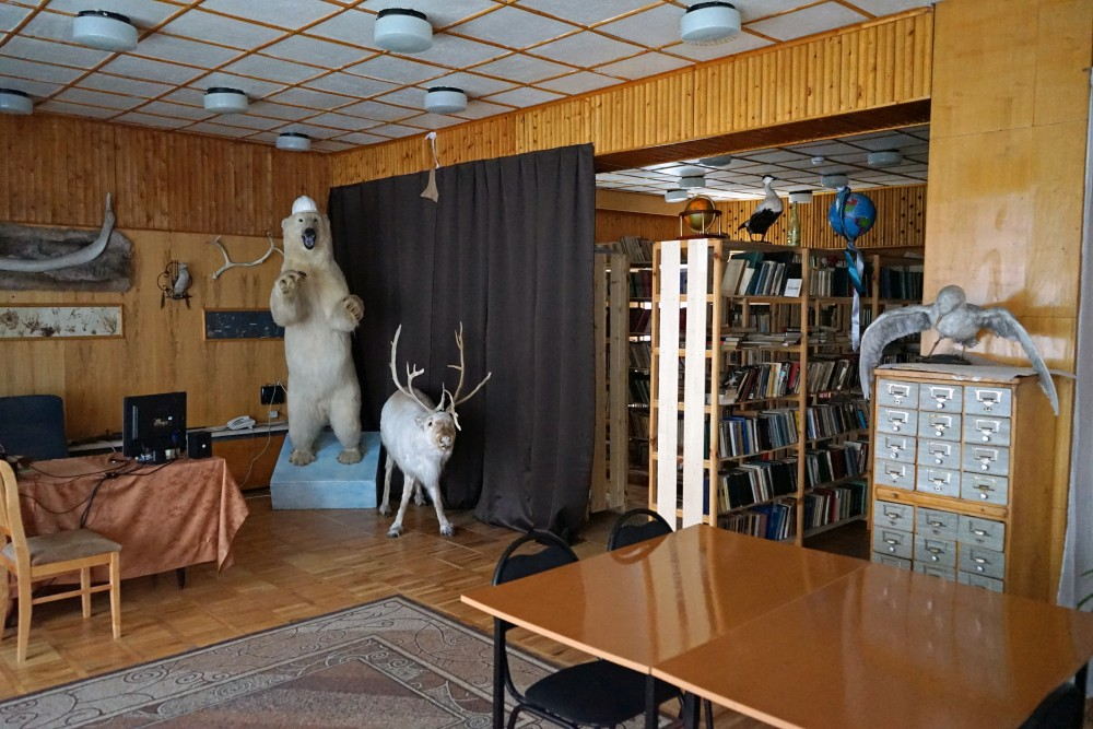 A polar bear and a reindeer are on display in a corner at the library in Barentsburg. (Thomas Nilsen/The Independent Barents Observer)