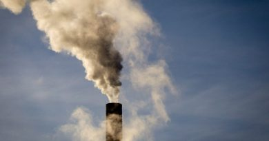 Finland could halve emissions by 2030 while saving money: study