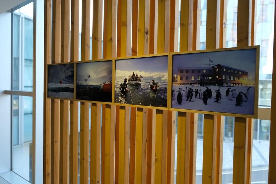 Photographs taken by Korean scientists on display. (Mia Bennett/Cryopolitics)