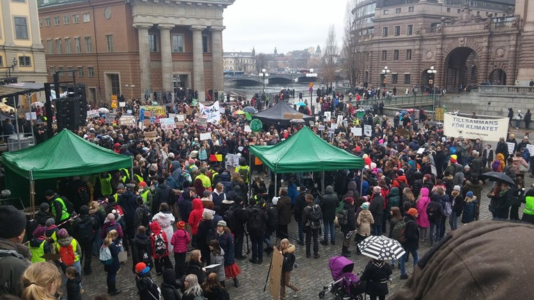 Protesters gathering early at Mynttorget, outside the Swedish parliament, where Greta Thunberg was set to speak shortly after noon. (Simon Linter/Radio Sweden Ekot)