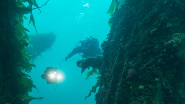 Parks Canada battles Arctic ice to explore crumbling Franklin expedition wreck