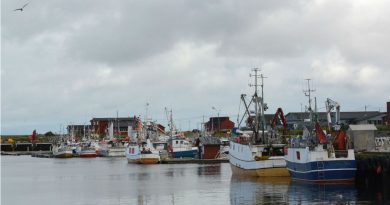 Barents Sea cod catch should be cut, researchers say
