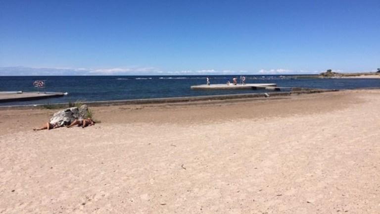 Warnings in Sweden about dangerous bacteria in Baltic Sea