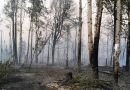 Extreme weather fuelling wildfires in southcentral Alaska
