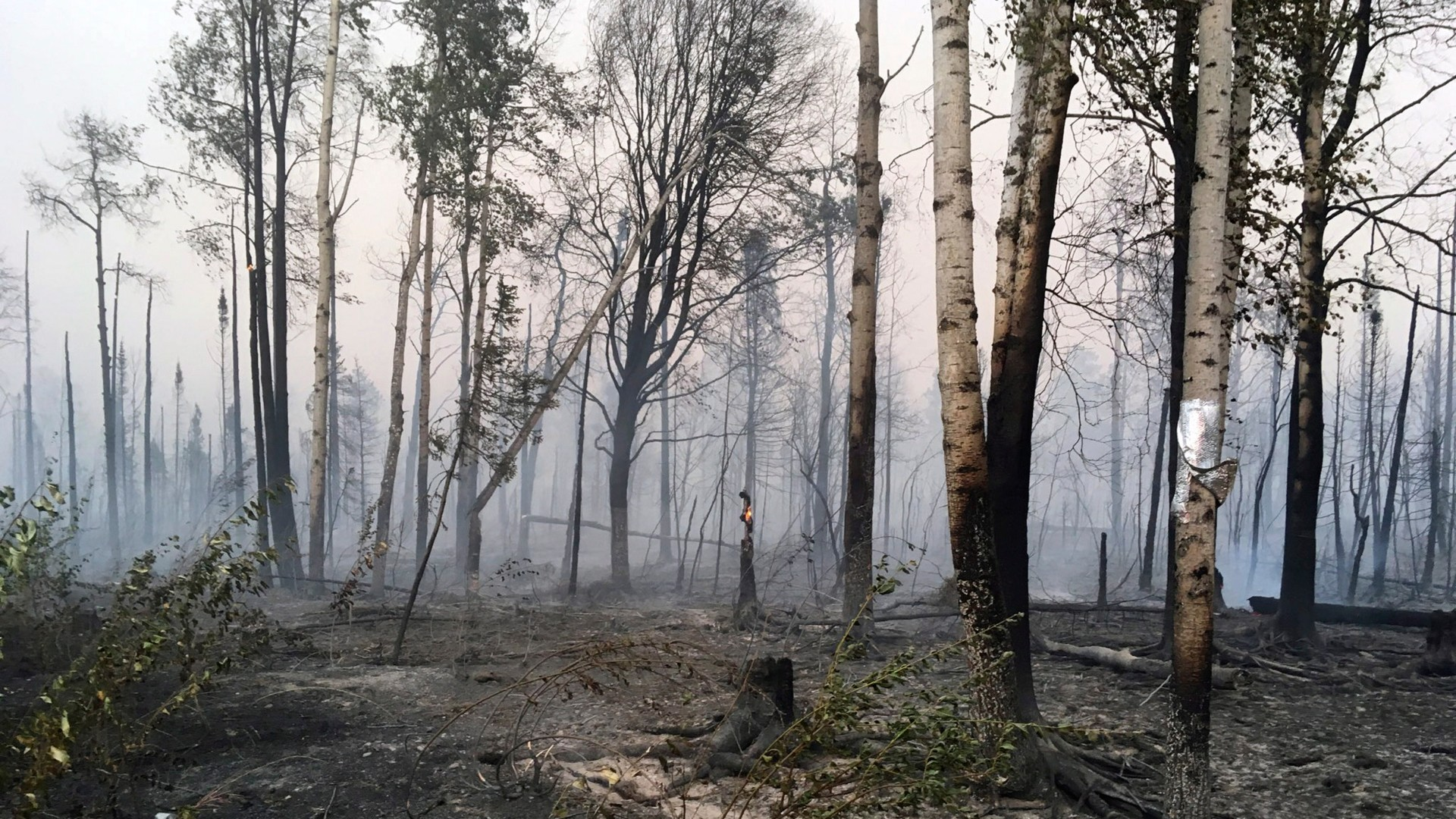 Calm winds helping firefighters battle wildfires in southcentral Alaska