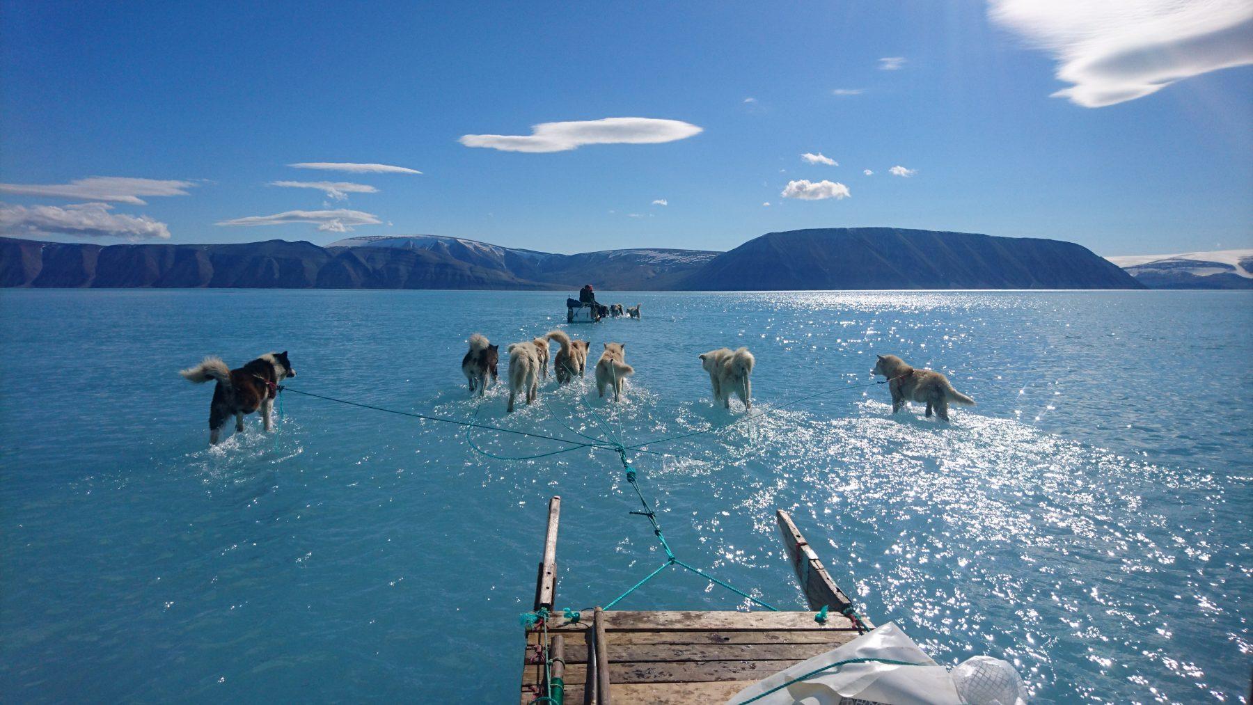 Environment – Eye on the Arctic