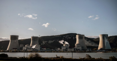 Finns favour nuclear power to fight climate change, poll says