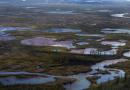 Nornickel must pay €1.62 billion for its huge oil spill in Arctic tundra