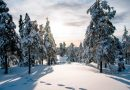 Snow can help lift people's moods says researcher at Stockholm University