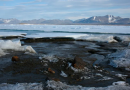 Expedition discovers what they believe is world's northernmost island off Greenland