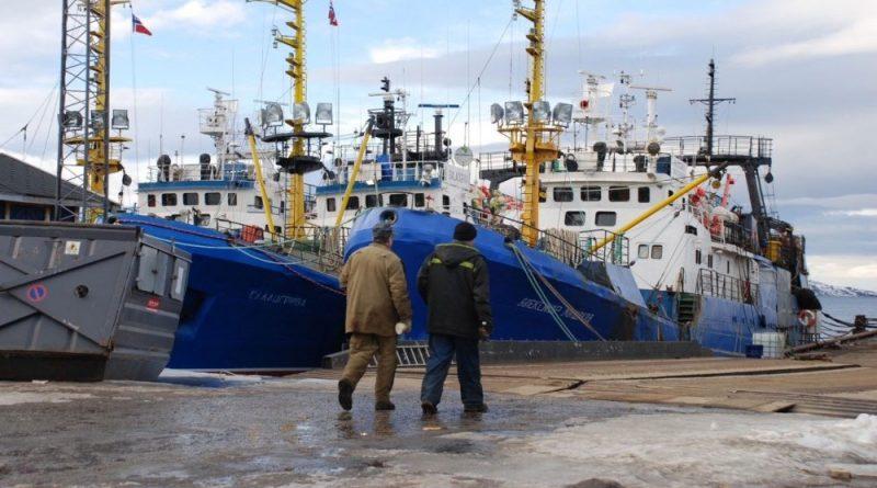 Norwegian and Russian fishermen get 20% cut in Barents cod quotas