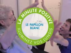 papillonBlanc_fr