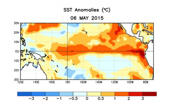 En juin, l'eau de surface située dans la zone équatoriale (Pacifique est et centre) a été 1 °C plus élevé qu'à l'habitude. Cet écart confirme une tendance bien amorcée depuis mai, alors que les spécialistes américains constataient les premiers signes de ce réchauffement.