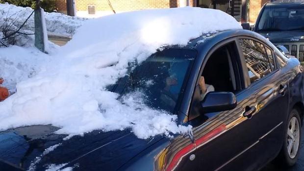 (Photo: Halifax Regional Police, Facebook)