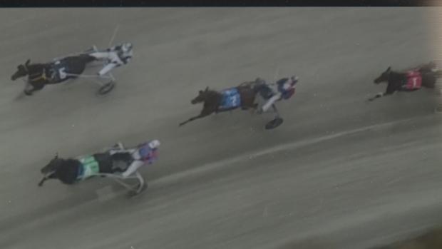 Image prise au-dessus des chevaux et de leurs jockeys par un drone (CBC)