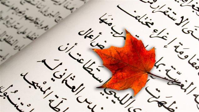 Islam : VRAI ou FAUX?
