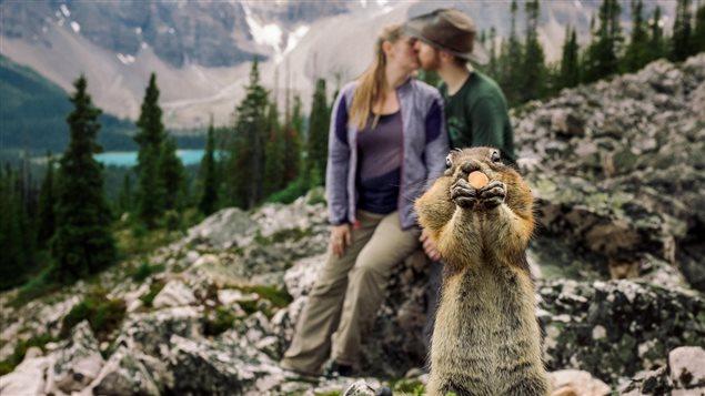 L'Organisation des Nations-Unies a décrété 2017 l'année du tourisme durable. Le Canada sera en 2017 l'endroit idéal pour tester cette initiative. Photo Credit: B.D.F.K. Photography