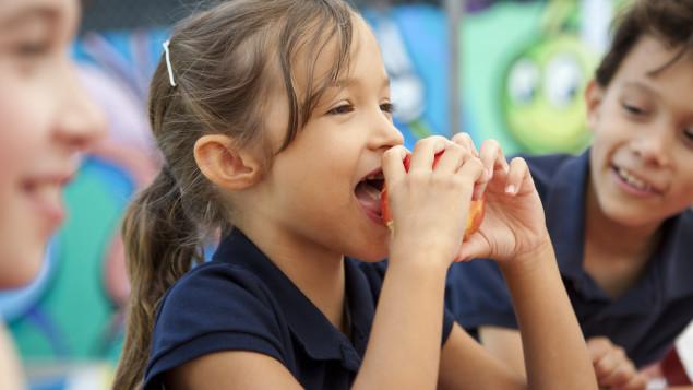 Le 19e Forum mondial sur la nutrition des enfants s'attarde aux façons de mettre en oeuvre des programmes dans les écoles. Photo : iStock