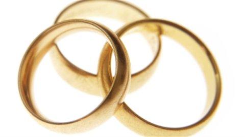 Dans les pays africains et musulmans, les évaluations du nombre de mariages polygames varient entre 2 % et 20 %.