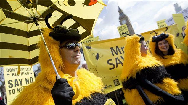 Des apiculteurs lors d'une manifestations à Londres le 26 avril 2013 contre l'utilisation de pesticides néonicotinoïdes. © Alastair Grant / AP Photo