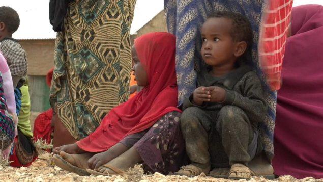 Aide humanitaire : le Canada moins généreux sous Trudeau que sous Harper - Radio-Canada