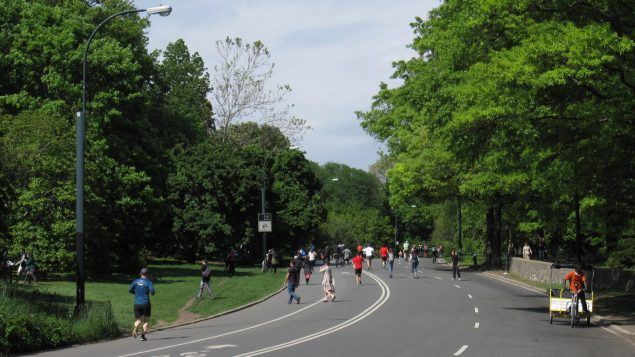 Park Drive, Central Park - Photo: Wikipédia