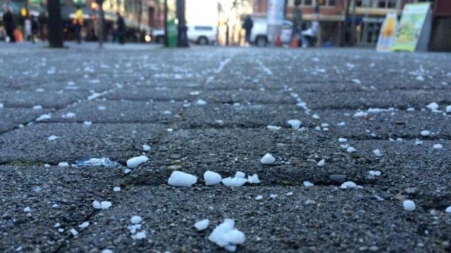 Du sel dans une rue du Grand Vancouver Photo : Lisa Johnson/CBC