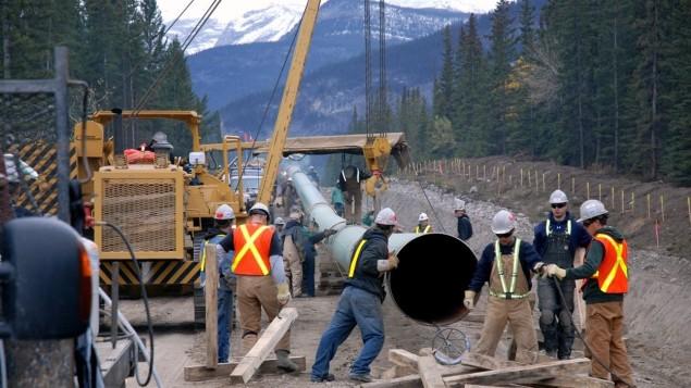 Des travailleurs de la compagnie Kinder Morgan installent au sol des segments de l'oléoduc Trans Mountain. Photo : Kinder Morgan