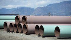 Des sections de pipeline sur les terrains de Trans Mountain à Kamloops, en Colombie-Britannique Photo : Jonathan Hayward/La Presse canadienne