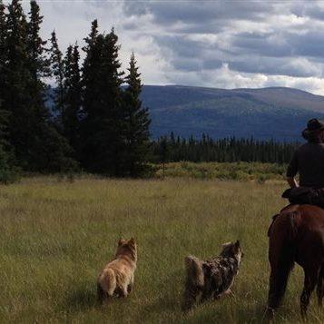 Sur les routes du Canada - Épisode 10 - Destination le Grand Nord