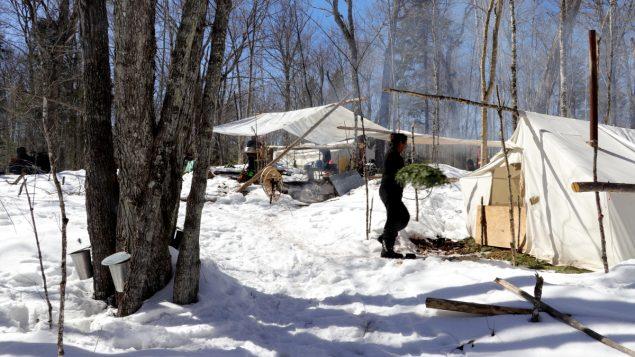 Le sirop d'érable atikamekw : une tradition ancestrale passionnément actuelle