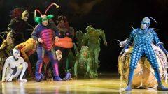 Le spectacle OVO du Cirque du Soleil - Photo : Le Cirque du Soleil