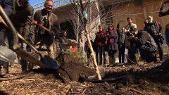 مواطنون من مونتريال يقومون بغرس أشجار تيمنا بيوم الأرض/راديو كندا