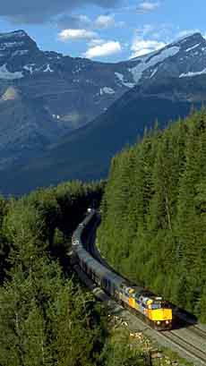 قطار تابع لفيا راي يتقدّم في الغابة المحيطة بالجبال بين مدينة جاسبر في ألبرتا وفانكوفر في كولومبيا البريطانية (فيا راي/الصحافة الكندية)