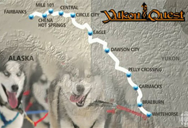 Yukon Quest, a sled dog race from Whitehorse, Yukon, to Fairbanks, Alaska, is considered the toughest race in the world. The challenge involves 1,600 km of ice and snow, and plenty of adrenalin! (Radio-Canada/Jean-François Bélanger)