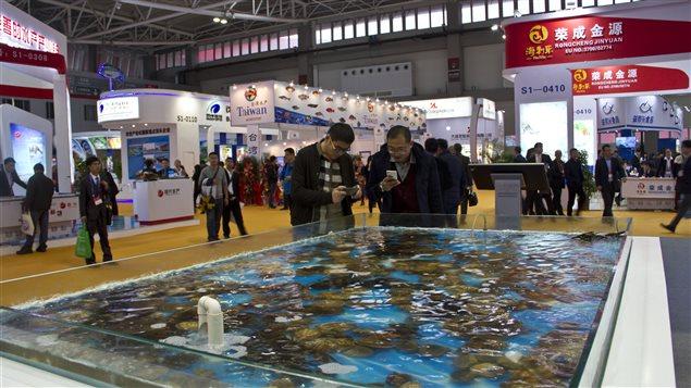 Salon mondial des produits de la mer de Qingdao, en Chine: une occasion en or pour les producteurs de l'Atlantique