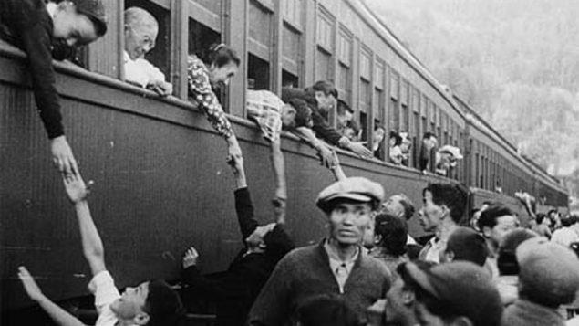 Sécurité et COVID-19 : leçons à tirer de l'internement des Japonais canadiens