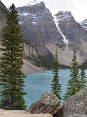 Free app promises enhanced visits to national parks