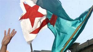 Drapeau algérien qui flotte Crédit photo : AFP / Hocine Zarouar