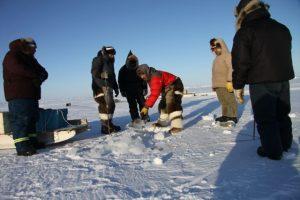 Des chasseurs percent un trou dans la mer glacée pour tendre leurs filets servant à capturer des poissons et des phoques. Photo Levon Sevunts.