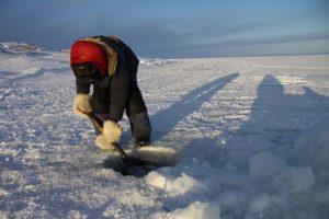 Un chasseur inuit utilise une pelle pour retirer la neige fondante qui s'est formée sur le trou où ses filets sont tendus. Photo Levon Sevunts.