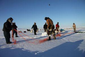 Des chasseurs inuits tendent leurs filets sous la glace près de Clyde River, au Nunavut. Photo Levon Sevunts.