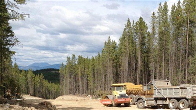 Le développement immobilier Raven's Ridge Estates de Whitehorse  Photo :  ravensridge.ca / Radio-Canada
