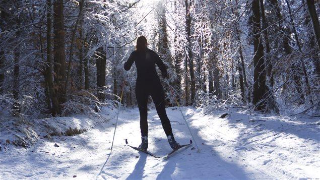 Ski de fond en forêt. (iStockPhoto)