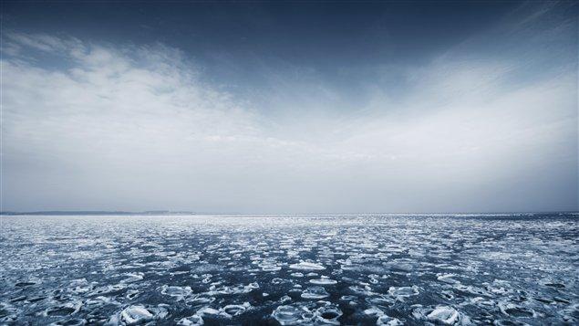 Dix ans de travail ont été nécessaires à la préparation de la carte du fond sous-marin, dessinée par plusieurs scientifiques travaillant tant dans des laboratoires à Ottawa que dans des camps d'observation des glaces au nord de l'île Ellesmere, où ils n'ont pas hésité à plonger pour typographier le plancher océanique à des milliers de mètres de profondeur. (iStockphoto)