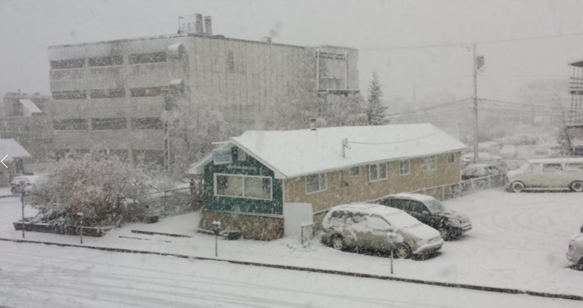 Dix centimètres de neige doivent s'abattre sur Whitehorse au cours de la journée. (James Miller/ICI Radio-Canada)