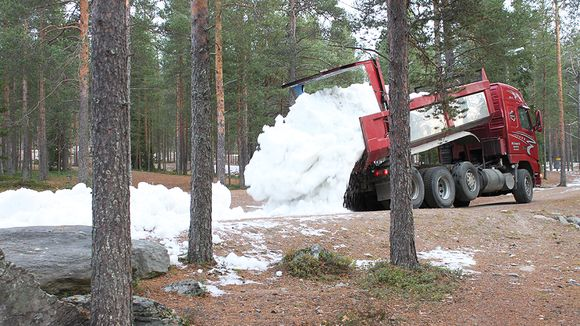 Trucks dumped snow recycled from last winter in the forests of Ounasvaara. (Sauli Antikainen / Yle)