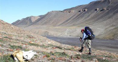 Anne Pélouas sur l'Île d'Ellesmere au parc national Quttinirpaaq (Nunavut). (BertrandLemeunier.com)