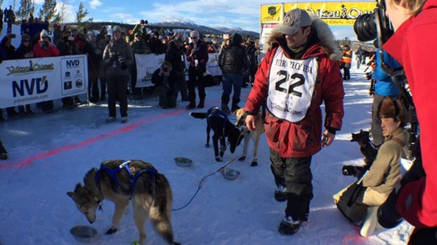 Hugh Neff est le gagnant de la 33e Yukon Quest. (Claudiane Samson/ICI Radio-Canada)