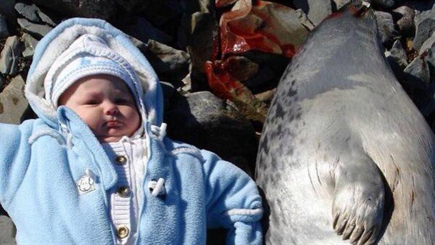 Cette photo de la petite fille de Tanya Tagaq étendue à côté d'un phoque abattu a déclenché toute une polémique. (via CBC.ca)